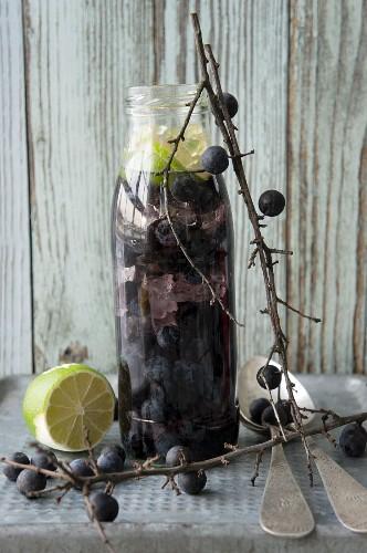 Homemade sloe liqueur