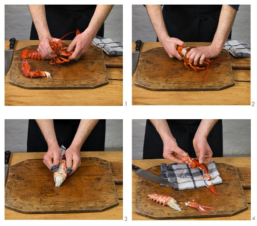 Cooked lobster being cracked open to remove the meat