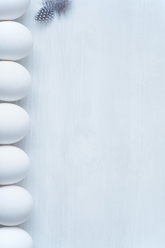 A row of white eggs and a feather