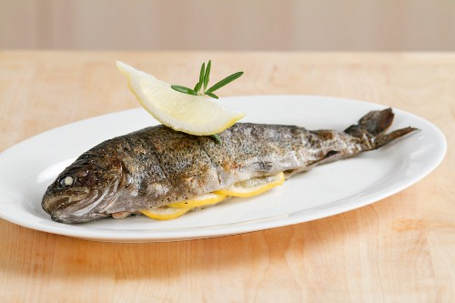 A grilled trout