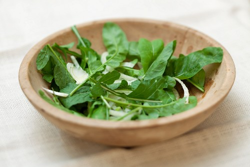 Simple Arugula and Fennel Salad in a Wooden Bowl