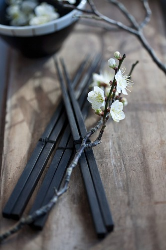 Chop sticks with plum blossom