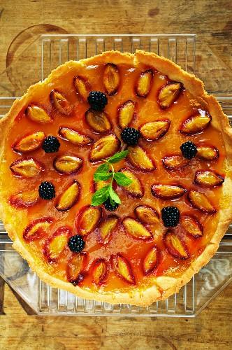 Plum-wine tart with blackberries