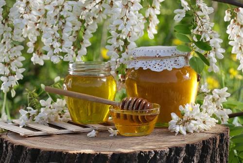 Acacia honey in pots beneath a flowering acacia tree