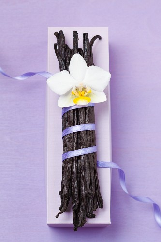 Bourbon-vanilla pods with blue ribbon and orchid flower