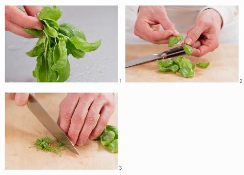 Mincing basil leaves