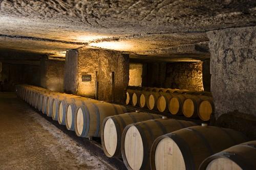 A storage cellar for barrique and bottles (Clos Fourtet, France)