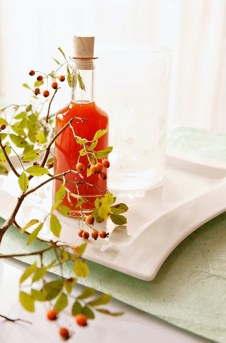 Rose hip juice