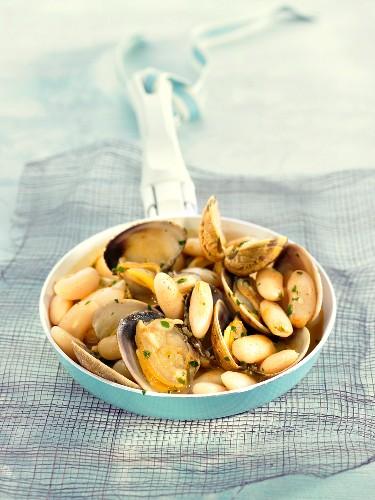 White beans with Venus clams (Spain)