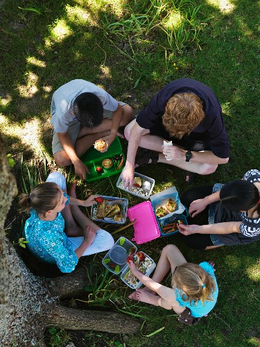 Children having a lunchtime picnic (seen from above)