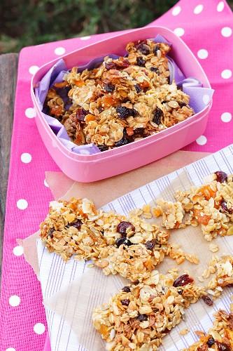 Homemade granola bars for a picnic
