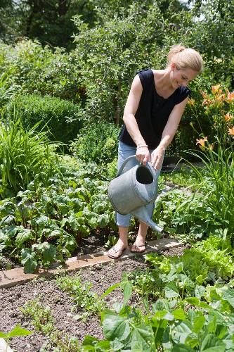Woman watering plants in backyard