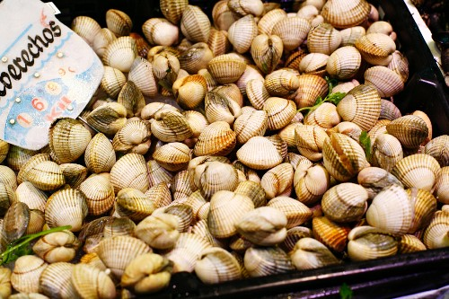Display of Middle Neck Clams at a Market in Spain