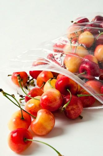 White cherries in a plastic bag