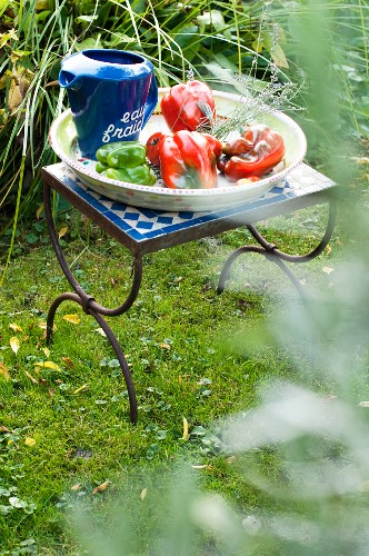 A bowl of fresh peppers on a garden table