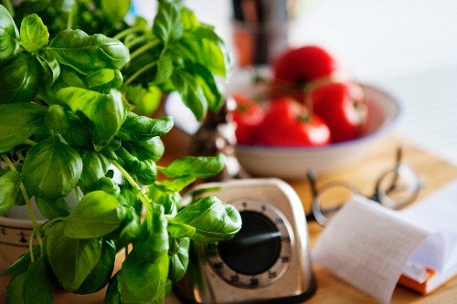 Basil, tomatoes, a timer and a notepad on a kitchen work surface