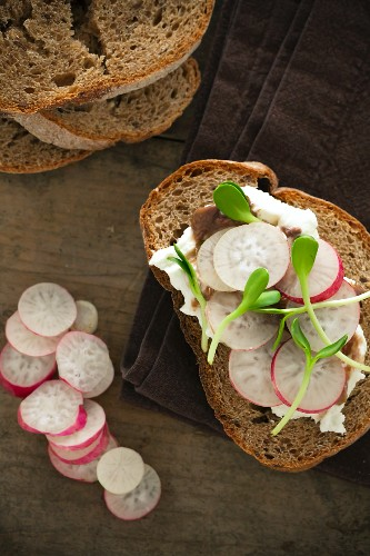 Whole Wheat Bread Topped with Cream Cheese and Radishes