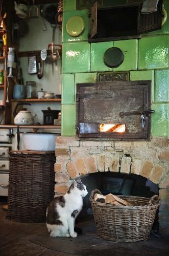 Katze sitzt vor Holzkachelofen in ländlicher Küche