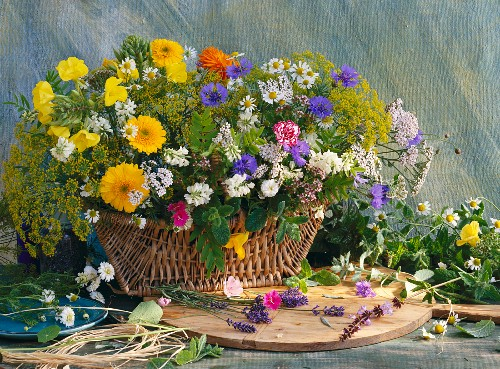 A basket of various herbs and flowers