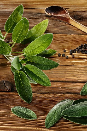 Sage leaves on a rustic wooden panel