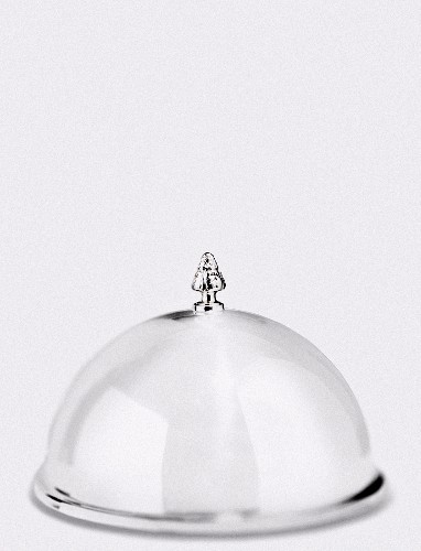 A silver cloche topped with a miniature tree