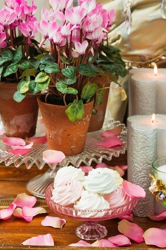 Meringues, silver candles and potted cyclamen