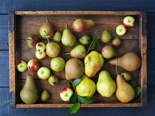 A Variety of Apples and Pears in a Wooden Box