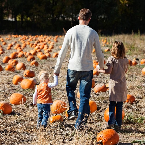 Father and daughters in pumpkin patch