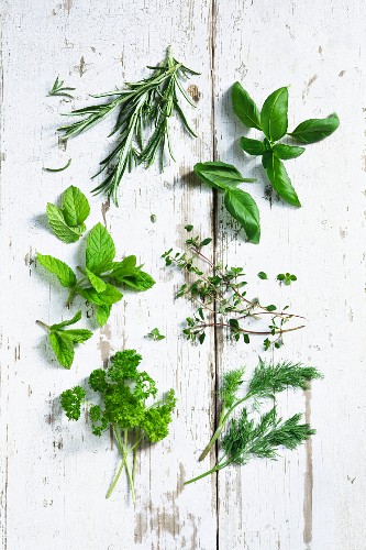 Rosemary, basil, parsley, mint, thyme and dill on a white wooden surface