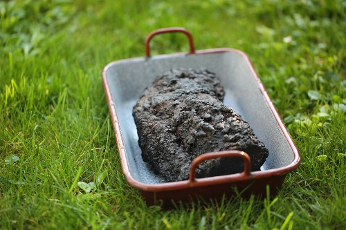 A chunk of barbecue pulled pork with a black crust outside in the grass