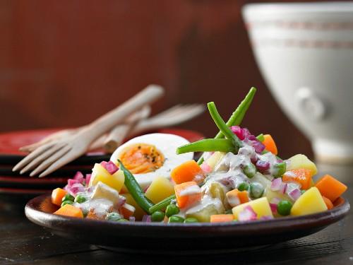 Vegetable salad with tuna sauce and a hard-boiled egg