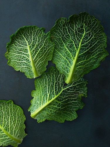 Fresh savoy cabbage leaves on a dark background