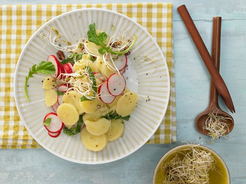 Colorful potato salad with radishes and sprouts