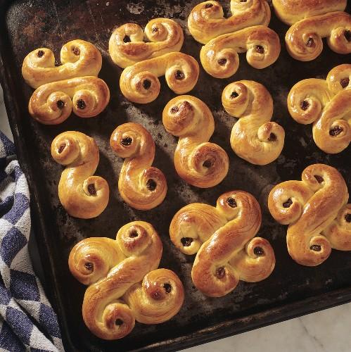 Yeast baking: Swedish 'Lussekatter' on baking tray