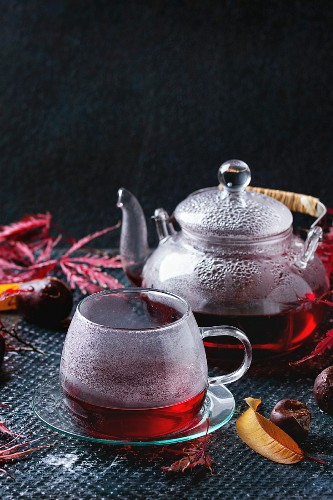 Autumn red hibiscus tea in glass cup and teapot standing on dark background with fall maple leaves and chestnuts