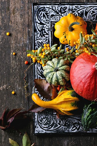 Assortment of different edible and decorative pumpkins and autumn berries in black decorative tray over wooden surface