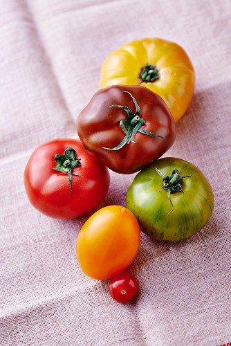 Various coloured tomatoes on a linen cloth