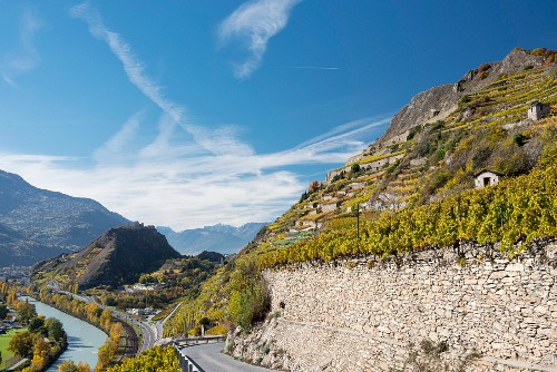 A steep vineyard on the Rhone and the hills of Sion between Valere and Tourbillon