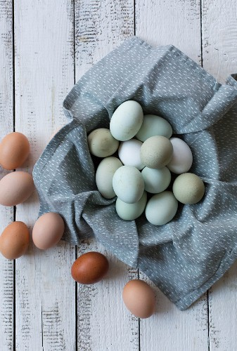 Different coloured eggs