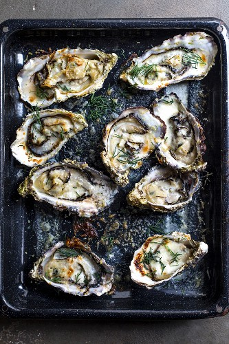 Creamy baked oysters with Parmesan and dill