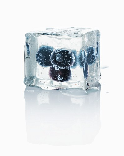 Ice cubes with blueberries