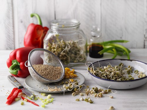 Millet, mung bean sprouts and vegetables