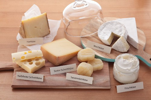 Hard cheese, soft cheese, semi-solid and solid sliced cheese, soured milk cheese