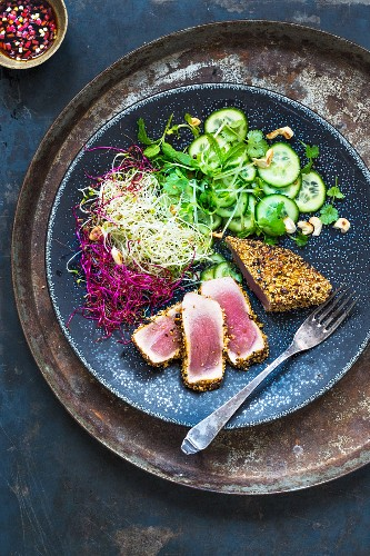 Dukka tuna with sprouts and cucumber salad