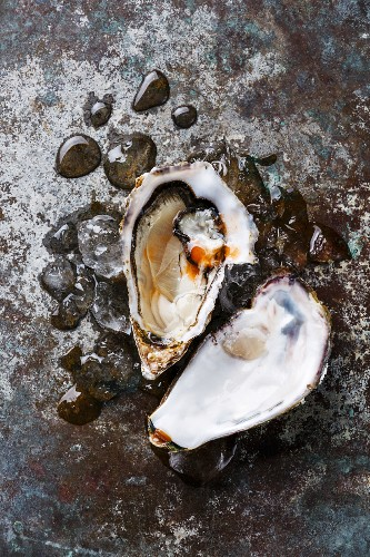 Open Oyster heart shape on ice with spicy sauce on metal background