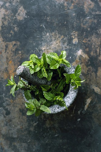 Peppermint in a stone mortar