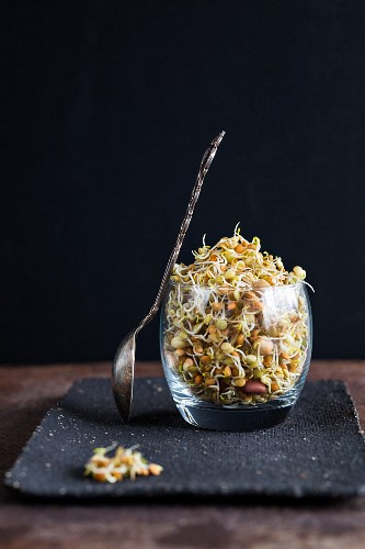 Bean sprouts in a glass
