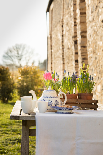 Table set with spring flowers for afternoon coffee in garden