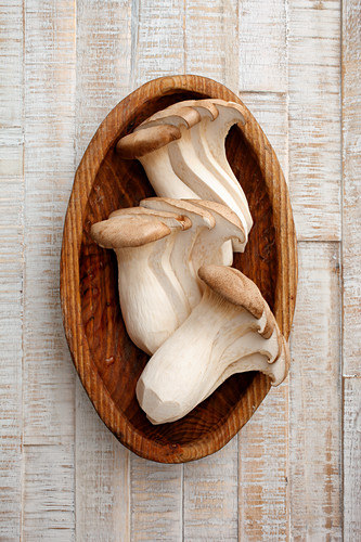 King trumpet mushroom in a wooden bowl (seen from above)