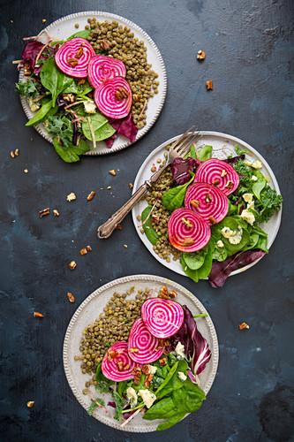 Salat mit Chioggia-Bete, Blattssalat, Blauschimmelkäse und Linsen